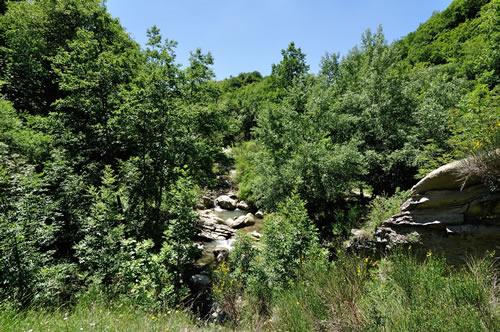 The Seven stone path